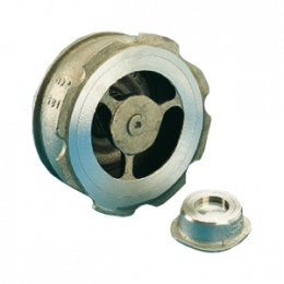 DN80 socla check valve